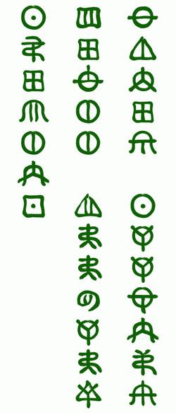 Sakuranomi_2