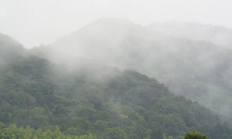 Tatewaku