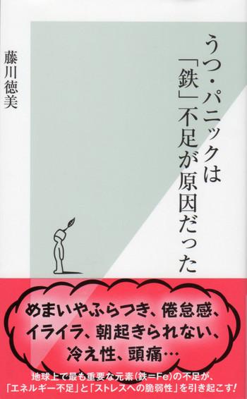 Tujikawatokumisann