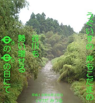 Tanigawa1_natu_1